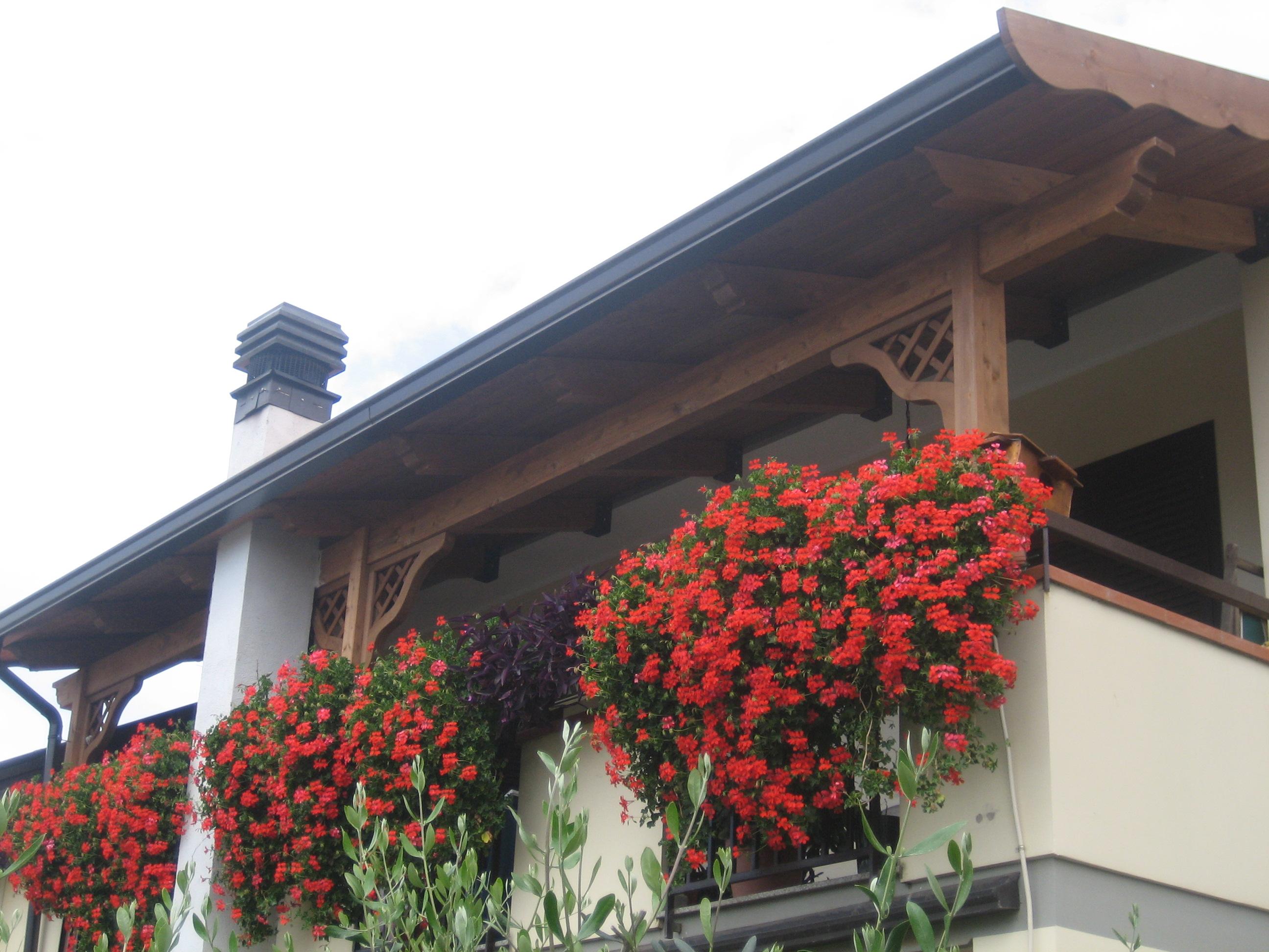 Permessi edili Tettoia in legno